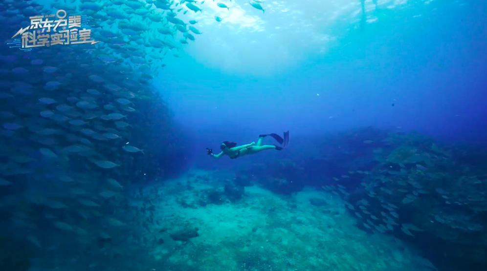 Meizu 15 Подводный свет b