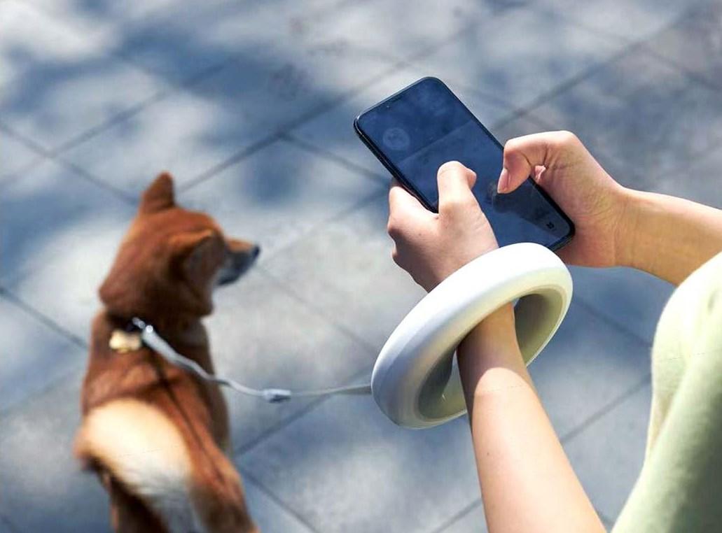 Что предлагает Xiaomi для самых любимых домашних питомцев