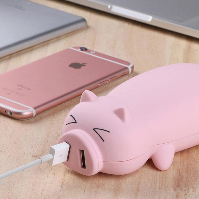 Зарядное устройство свинка