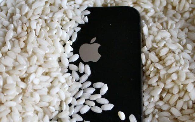 Смартфон в рисе