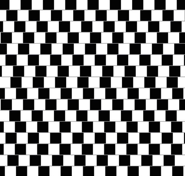 Иллюзия шахматной доски