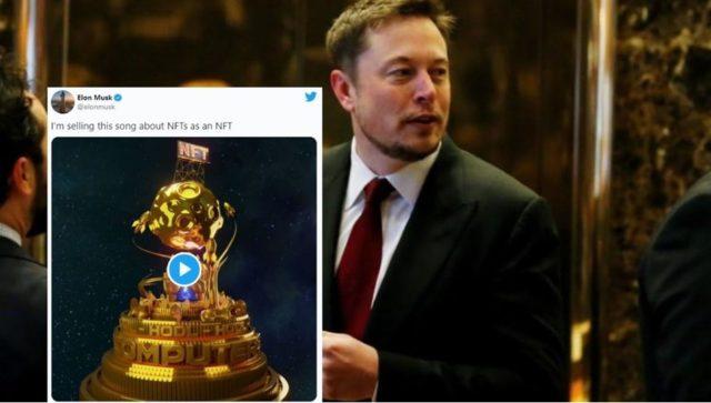 Илон Маск на презентации нового хита NFT
