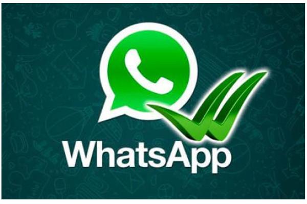 Логотип WhatsApp и птички