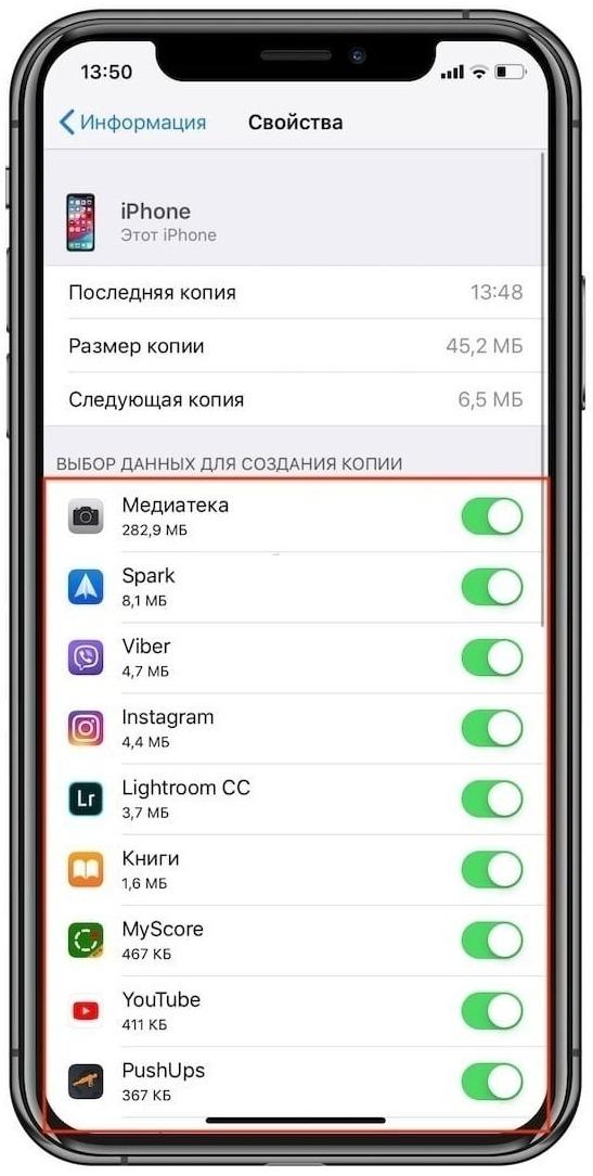 Выбор данных для создания копии на Айфоне